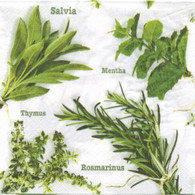 """Lunch napkins - Green Herbs 6.5""""x6.5"""""""