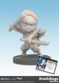 Ninja All-Stars: Arashikage