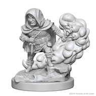 Dungeons & Dragons: Nolzur's Marvelous Unpainted Minis: Halfling Male Rogue