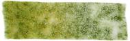 Battlefields XP: Meadow Flowers Flock