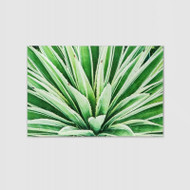 Canvas Print: Green Cactus