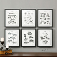 Science Studies Set of 6 a Prints Framed by Uttermost