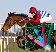 The Riding Sock
