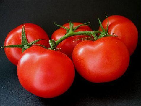 ace-55-tomato.jpg