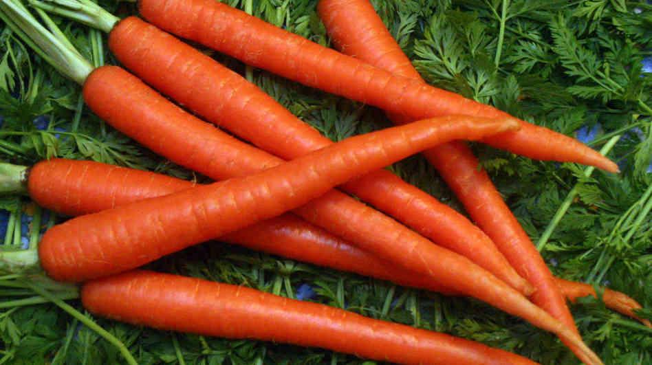 scarlet-nantes-carrot.jpg
