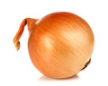 Texas Early Grano 502 PRR Short Day Onion Seed