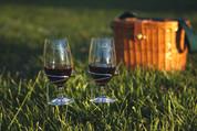 Handy Holder for Wine Glasses (Set of 2)