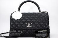 CHANEL 2017 Black Caviar/ Lizard Coco Handle Bag RHW #23492586 *New