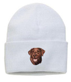 Chocolate Labrador Retriever Knit Cap