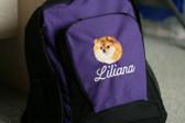 Pomeranian backpack Font shown on bag is ALLEGRA