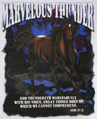 Marvelous Thunder T-shirt - Imprinted Job 37:5