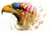 Patriotic Eagle T-shirt - Imprinted American Eagle
