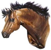 Buckskin Arabian