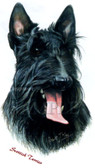 Scottish Terrier T-shirt - Imprinted Scottie Head