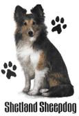 Shetland Sheepdog T-shirt - Imprinted Sheltie Sitting