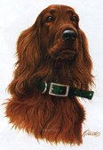 Irish Setter T-shirt - Imprinted Irish Setter Head