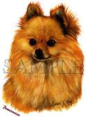 Pomeranian T-shirt - Imprinted Pomeranian