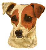 Jack Russell T-shirt - Imprinted Jack Russell