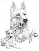 White German Shepherd T-shirt - Imprinted White German Shepherd Collage