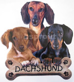 Dachshund T-shirt - Imprinted 3 Dachshund Puppies