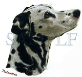 Dalmatian T-shirt - Imprinted Dalmatian Head