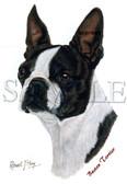 Boston Terrier T-shirt - Imprinted Boston Terrier Head