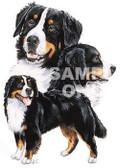 Bernese Mountain Dog T-shirt - Imprinted Bernese Collage
