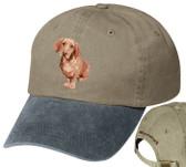 Basset Fauve de Bretagne Hat