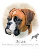 Boxer T-shirt - Imprinted Boxer Head