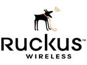 Ruckus End User Support for Unleashed Access Points, 1 Year