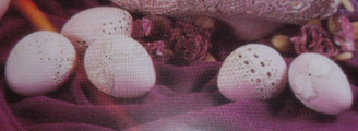 Dona lace eggs set of 5 ceramic bisque ready to paint