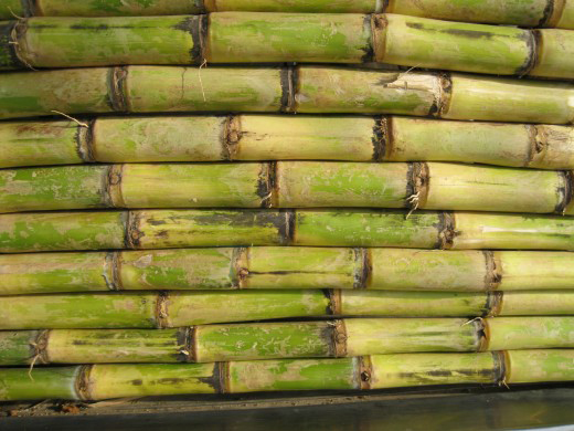 the wonders brought by sugarcane The brazilian sugarcane industry association (unica) issued the following statement in response, which should be attributed to elizabeth farina, unica president.