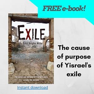Exile ebook by Rabbi Avigdor Miller