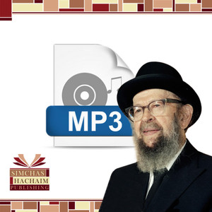 Program for Salvation (Elul) (#E-197) -- MP3 File