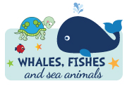 boy-whale-fish-sea-animals-invitation2.jpg