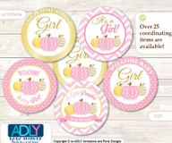 Baby Shower Girl Pumpkin Cupcake Toppers Printable File for Little Girl and Mommy-to-be, favor tags, circle toppers, Chevron, Pink