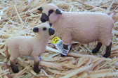 Collectable Animals, Shropshire Sheep, Mother Lamb