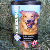 Cosequin DS Joint Health Supplement for Dogs, 60 Soft Chews