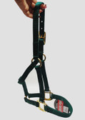 Equine Weanling or Pony Nylon Halter, Color Green, Fits Horses From 200 to 300 lbs