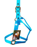 Big D Horse Halter (In Store Only) Nylon, Turquoise