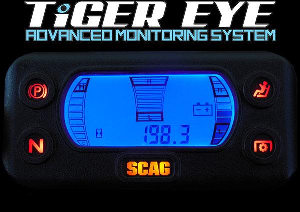 tigereye-600.jpg