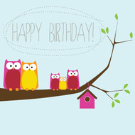 Owl Birthday Greeting Card