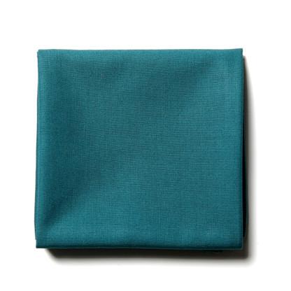 Teal handkerchief for men