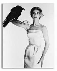 (SS172237) Tippi Hedren Movie Photo
