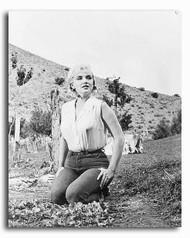 (SS2243475) Marilyn Monroe  The Misfits Movie Photo