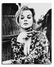 (SS2224027) Ann-Margret Movie Photo