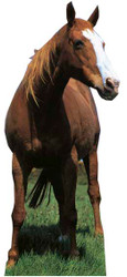 Mustang Horse - Lifesize Cardboard Cutout / Standee