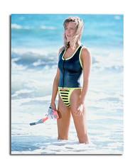 Courtney Thorne-Smith Movie Photo (SS3617952)