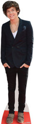 Harry Styles Cardboard Cutout