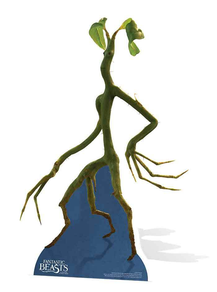 Pickett The Bowtruckle Fantastic Beasts And Where To Find